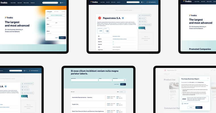 Findbiz redesign case study