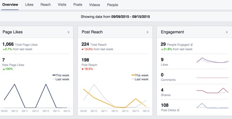 facebook marketing insights overview